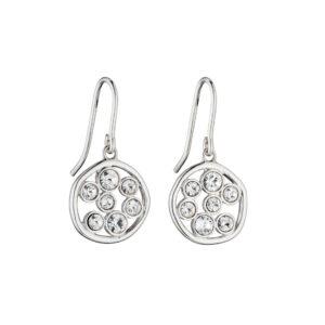 Round Organic Crystal Earrings